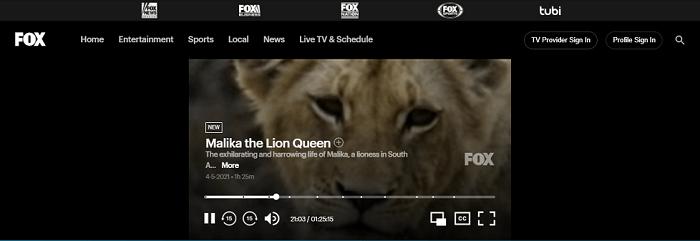 watch-fox-tv-in-canada-5